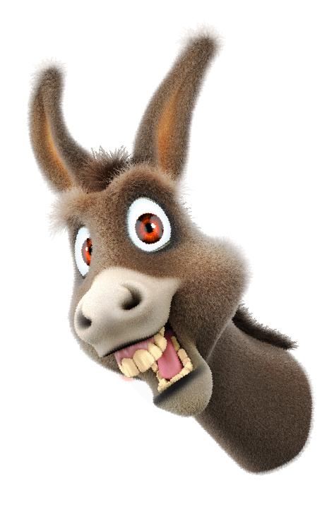 Don't be a Donkey Entertoyment